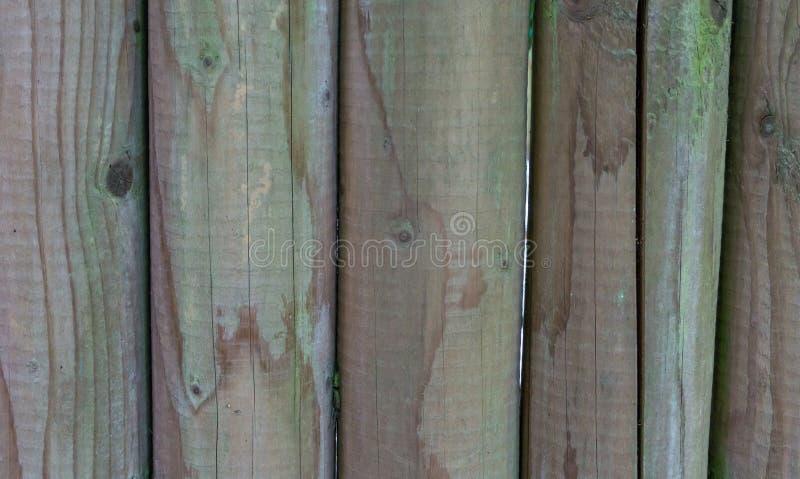 Νέο καθαρό ξύλινο υπόβαθρο σύστασης πόλων μακρο στενό επάνω στοκ φωτογραφίες