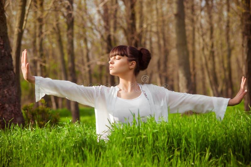 Νέο κορίτσι που κάνει τη γιόγκα σε μια πράσινη χλόη στοκ εικόνες με δικαίωμα ελεύθερης χρήσης