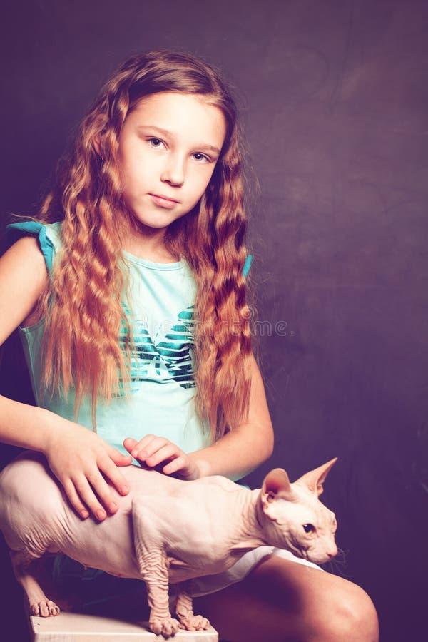 Νέο κορίτσι που κρατά την άτριχη γάτα στοκ εικόνα με δικαίωμα ελεύθερης χρήσης