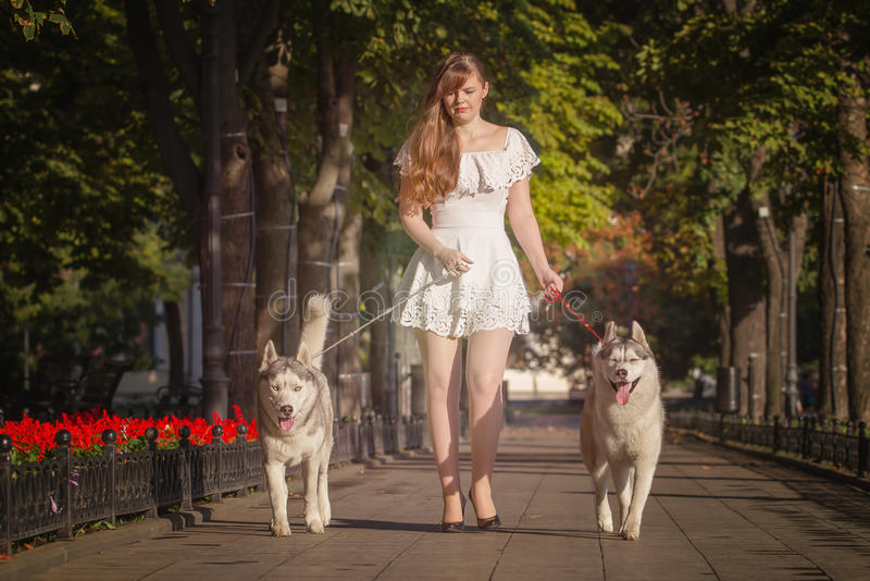 Νέο κορίτσι που περπατά κάτω από την οδό με δύο σκυλιά στοκ φωτογραφίες