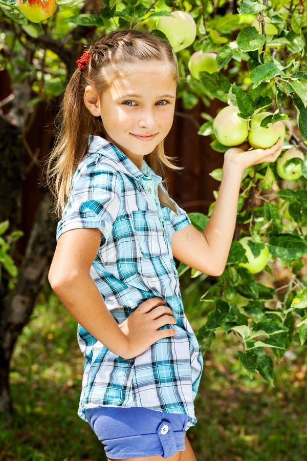 Νέο κορίτσι σε έναν οπωρώνα μήλων στοκ εικόνες
