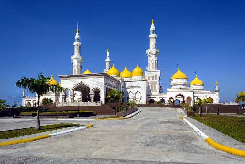 Νέο μεγάλο μουσουλμανικό τέμενος στοκ φωτογραφίες