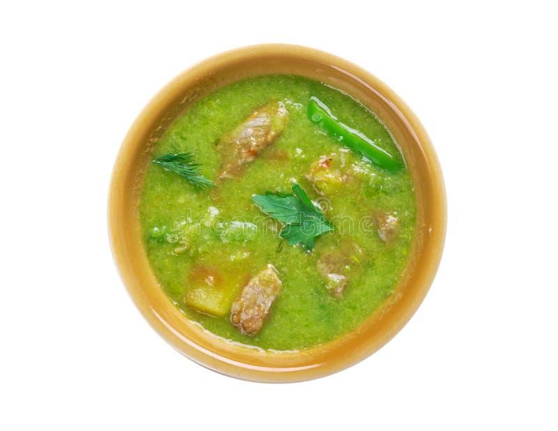 Νέο μεξικάνικο πράσινο Stew της Χιλής στοκ φωτογραφία με δικαίωμα ελεύθερης χρήσης