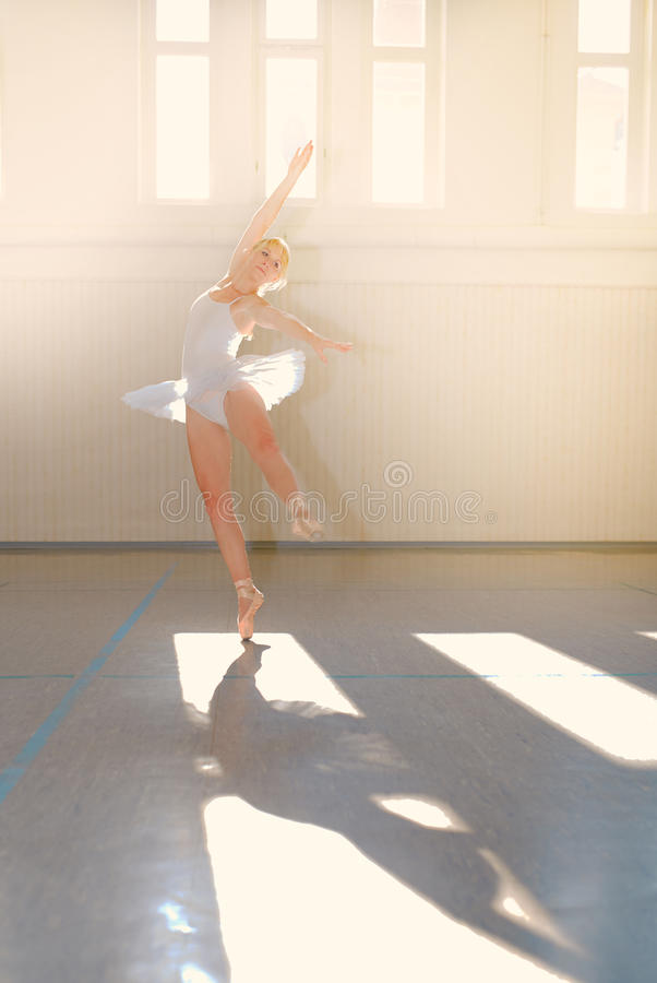 Νέο μπαλέτο γυναικών στοκ εικόνες με δικαίωμα ελεύθερης χρήσης