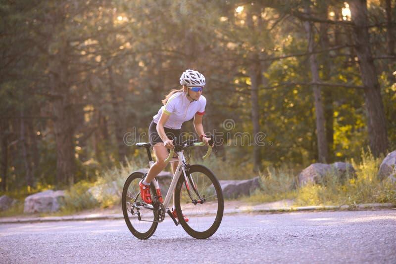 Νέο οδηγώντας οδικό ποδήλατο ποδηλατών γυναικών στον ελεύθερο δρόμο στο δάσος στην καυτή θερινή ημέρα r στοκ φωτογραφία
