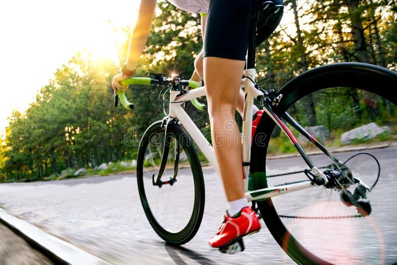 Νέο οδηγώντας οδικό ποδήλατο ποδηλατών γυναικών στον ελεύθερο δρόμο στο δάσος στην καυτή θερινή ημέρα r στοκ φωτογραφία με δικαίωμα ελεύθερης χρήσης