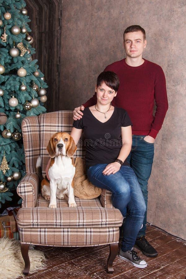 Νέο οικογενειακό ζεύγος με το σκυλί λαγωνικών στην καρέκλα κοντά στο νέο δέντρο έτους στοκ εικόνα