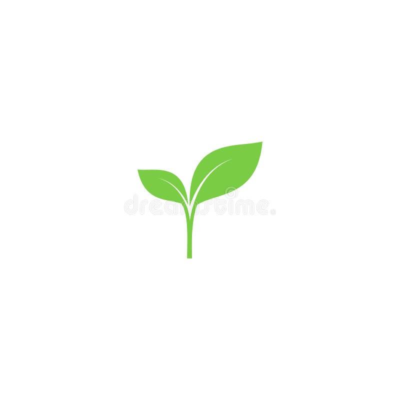 Νέο πράσινο διανυσματικό εικονίδιο νεαρών βλαστών ελεύθερη απεικόνιση δικαιώματος
