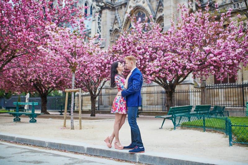 Νέο ρομαντικό ζεύγος στο Παρίσι στοκ εικόνες με δικαίωμα ελεύθερης χρήσης