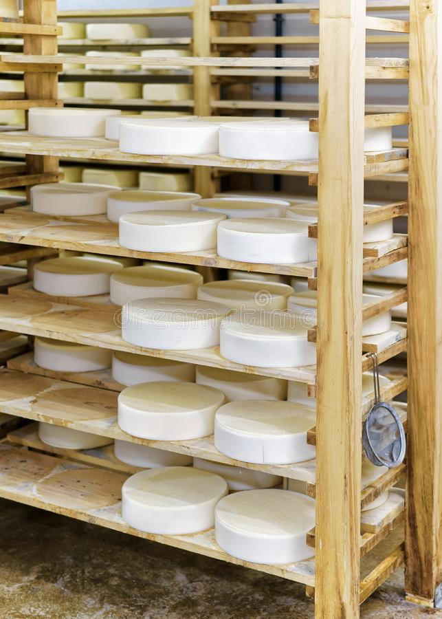 Νέο τυρί Comte στο ωριμάζοντας γαλακτοκομείο Franche κελαριών στοκ φωτογραφίες