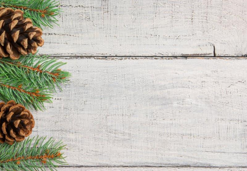 Νέο υπόβαθρο δέντρων πεύκων έτους Χριστουγέννων και διακοσμήσεων κώνων Χριστούγεννα και Χριστούγεννα στα άσπρα ξύλινα διαστήματα  στοκ εικόνα