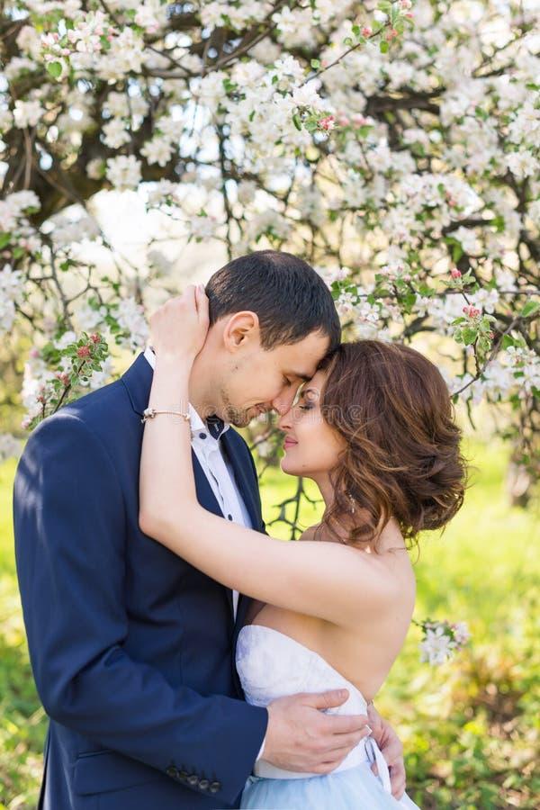 Νέο φίλημα ζευγών στον ανθίζοντας κήπο άνοιξη Αγάπη και ρομαντικό θέμα στοκ φωτογραφία