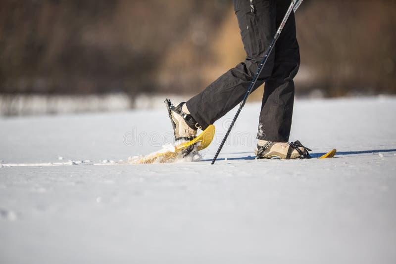 Νέο χιόνι-πετάλωμα γυναικών στοκ εικόνα