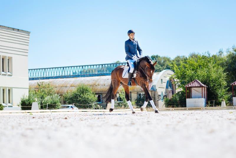 Νέο όμορφο άτομο που οδηγά το σκοτεινό καφετί άλογό του στη μεγάλη διαδρομή αγώνων στοκ εικόνα με δικαίωμα ελεύθερης χρήσης