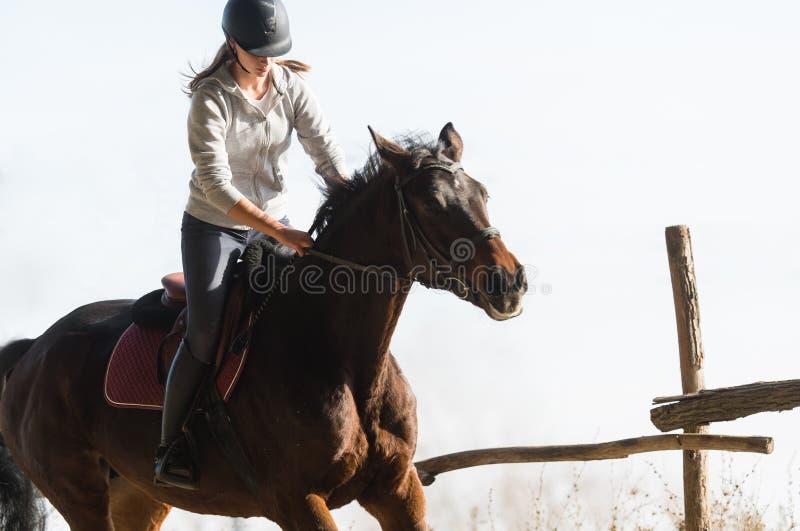 Νέο όμορφο κορίτσι - που οδηγά ένα άλογο με τα αναδρομικά φωτισμένα φύλλα πίσω στοκ φωτογραφία