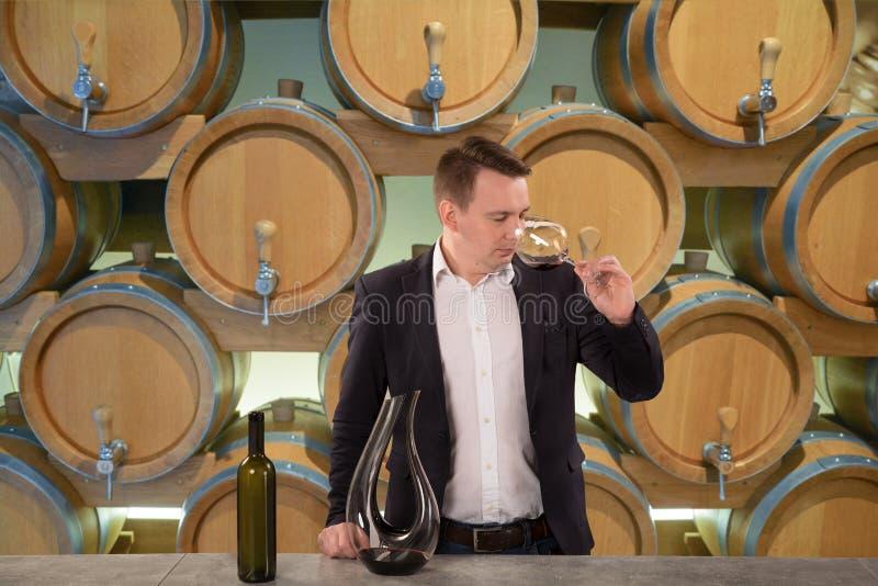 Νέο όμορφο πιό sommelier δοκιμάζοντας κόκκινο κρασί ατόμων στο κελάρι κρασιού στοκ εικόνα με δικαίωμα ελεύθερης χρήσης