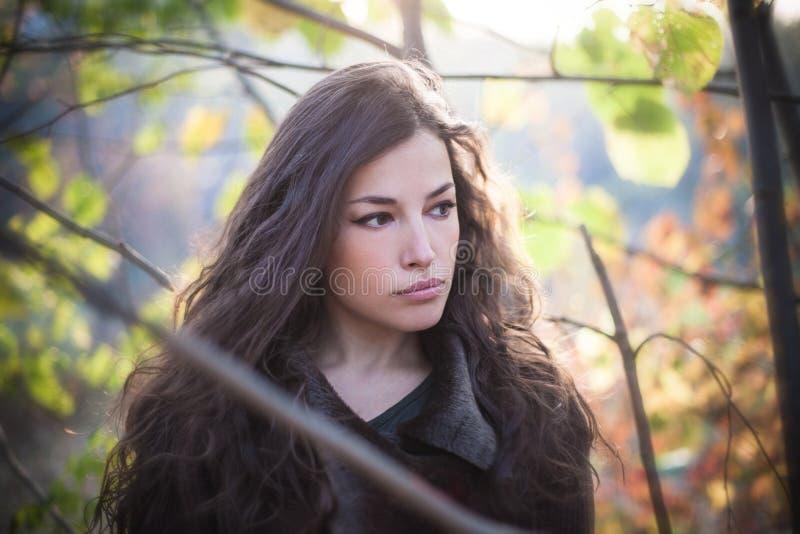 Νέο όμορφο πορτρέτο φθινοπώρου γυναικών στο δασικό φυσικό φως στοκ φωτογραφίες με δικαίωμα ελεύθερης χρήσης