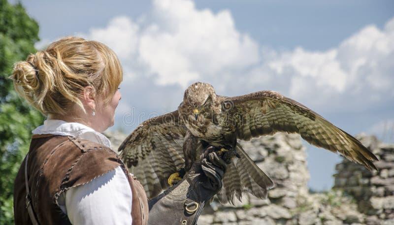 Νέο όμορφο Falconer με το γεράκι του, που χρησιμοποιείται για τη εκτροφή γερακί, στοκ φωτογραφίες