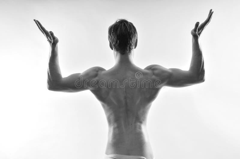 Νέο bodybuilder στοκ εικόνες με δικαίωμα ελεύθερης χρήσης