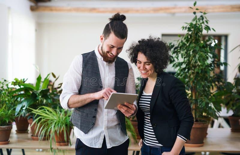Νέο businesspeople δύο που χρησιμοποιεί την ταμπλέτα στην αρχή, έννοια ξεκινήματος στοκ εικόνα με δικαίωμα ελεύθερης χρήσης