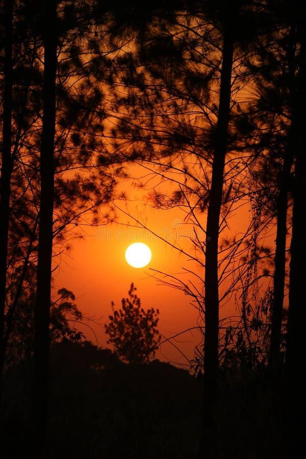 Νίκαια και όμορφο ηλιοβασίλεμα στοκ εικόνα