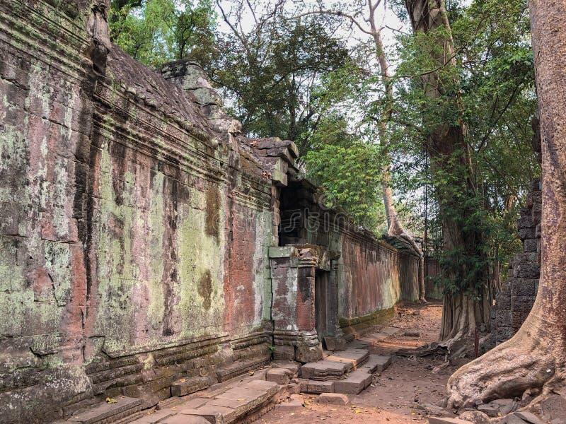 Ναοί της Καμπότζης Angkor στοκ φωτογραφία με δικαίωμα ελεύθερης χρήσης
