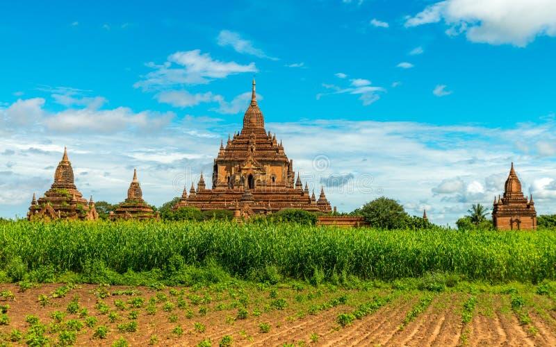 Ναοί Bagan, το Μιανμάρ στοκ φωτογραφίες