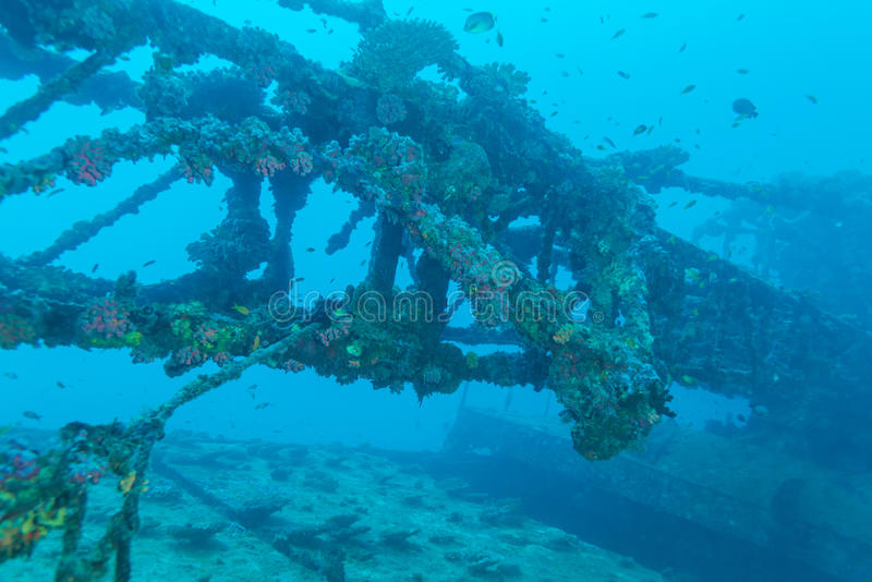 Ναυάγιο στο ωκεάνιο μπλε, Μαλδίβες στοκ εικόνες