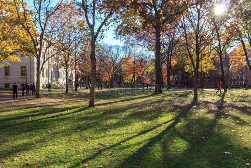Ναυπηγείο του Χάρβαρντ στοκ φωτογραφία με δικαίωμα ελεύθερης χρήσης