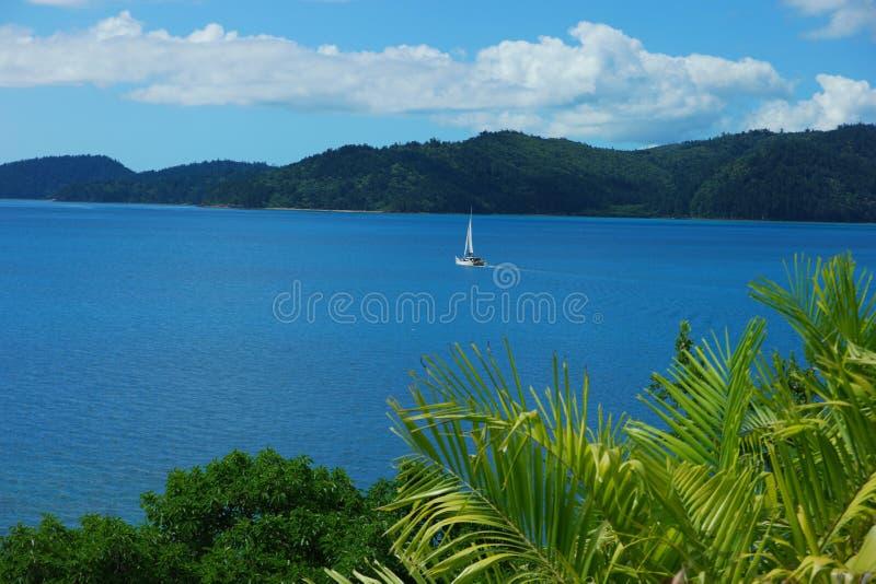 Ναυσιπλοΐα νησιών του Χάμιλτον στοκ φωτογραφίες