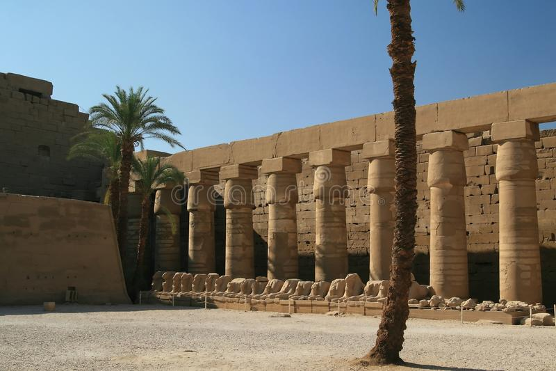 Download ναός Luxor της Αιγύπτου στηλών Στοκ Εικόνα - εικόνα από sphinx, αιγυπτιακά: 13185829