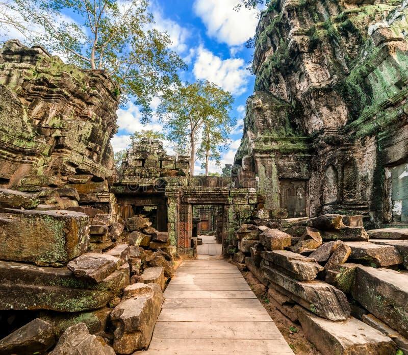 Ναός TA Prohm σε Angkor Wat, Καμπότζη στοκ εικόνες
