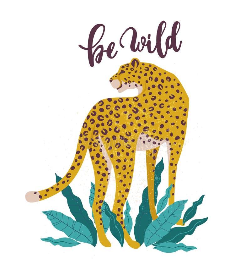 Να είστε άγριο σύνθημα leopard Γραφική τυπωμένη ύλη τυπογραφίας, σχέδιο μόδας για τις μπλούζες Διανυσματικές αυτοκόλλητες ετικέττ διανυσματική απεικόνιση