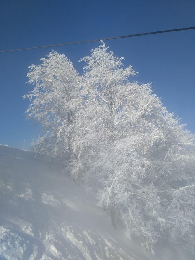 να είστε απολύτως ευτυχής ακούει το ι εάν τα βουνά εικόνας ευχαριστούν χρησιμοποιημένος όπου ο χειμώνας εσείς στοκ φωτογραφία με δικαίωμα ελεύθερης χρήσης