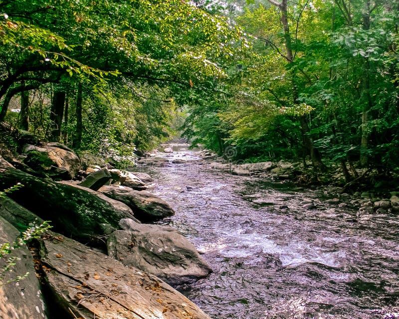 Να ελιχτεί επάνω ο μικρός ποταμός περιστεριών στοκ εικόνες