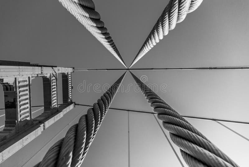 Να εξετάσει επάνω μέσω των καλωδίων υποστήριξης το χρυσό πύργο υποστήριξης γεφυρών πυλών σε γραπτό στοκ φωτογραφία
