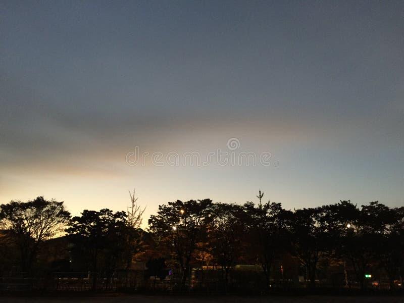 Να εξετάσει μακριά την αυγή στοκ φωτογραφία με δικαίωμα ελεύθερης χρήσης