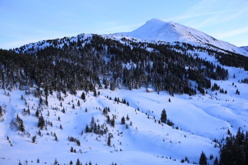 Να εξισώσει το χειμώνα Carpathians στοκ εικόνες