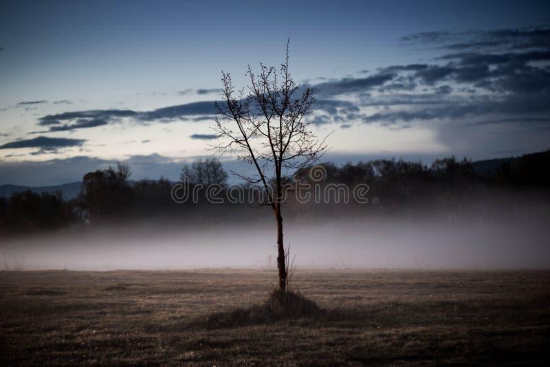 να εξισώσει misty στοκ εικόνες