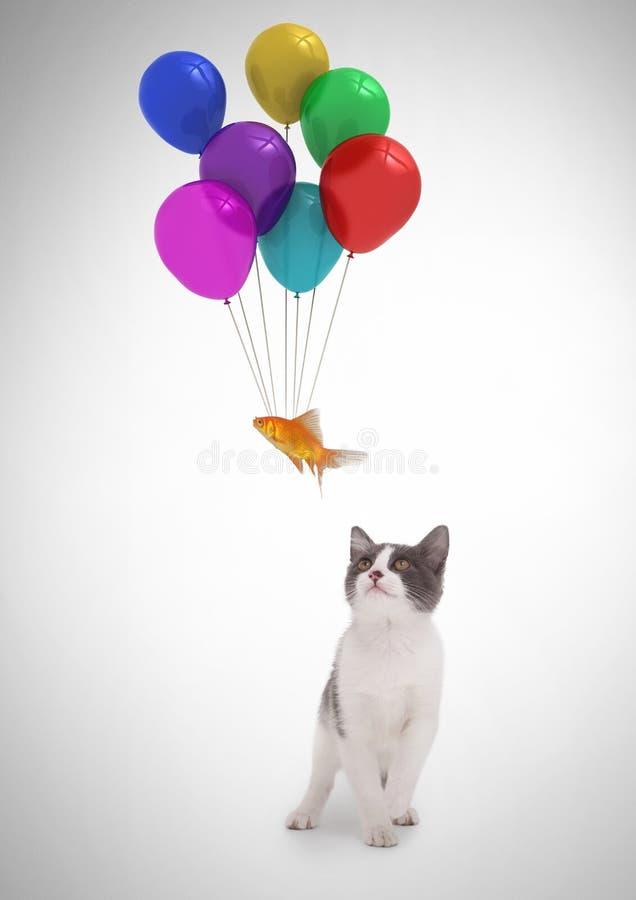 Να επιπλεύσει ψαριών προσοχής γατών που δένεται στα μπαλόνια στοκ φωτογραφίες