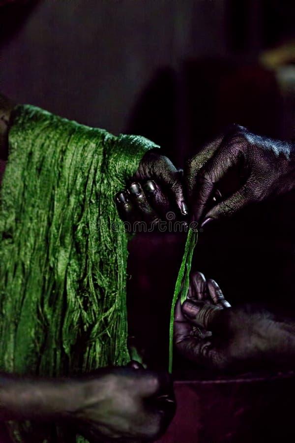 Να ισχύσει φλοιών πράσινο στο μαλλί στοκ φωτογραφίες