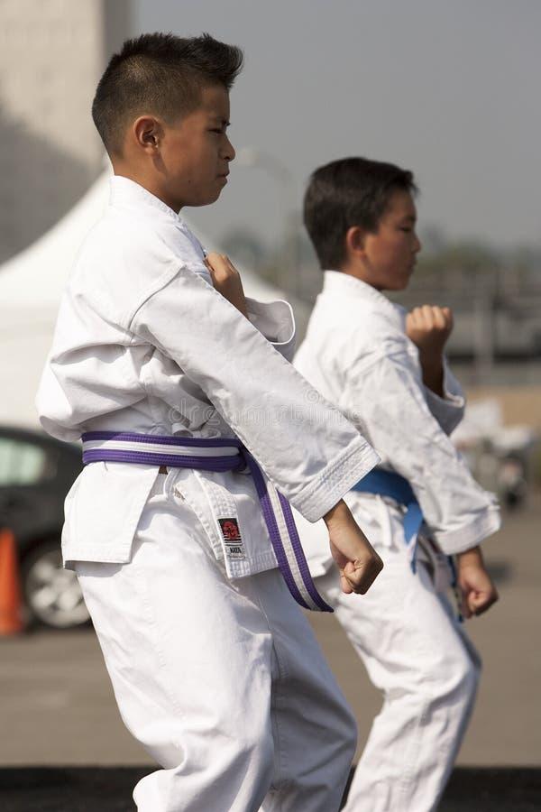 να κάνει karate τα κατσίκια kata στοκ εικόνες