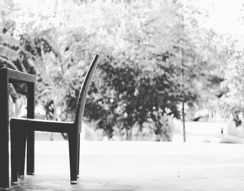 Να καθίσει μόνο στο χρόνο προγευμάτων στοκ φωτογραφίες με δικαίωμα ελεύθερης χρήσης