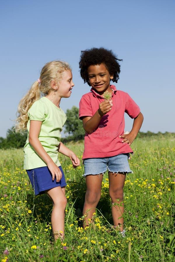 να πάρει λουλουδιών παι&del στοκ φωτογραφία με δικαίωμα ελεύθερης χρήσης