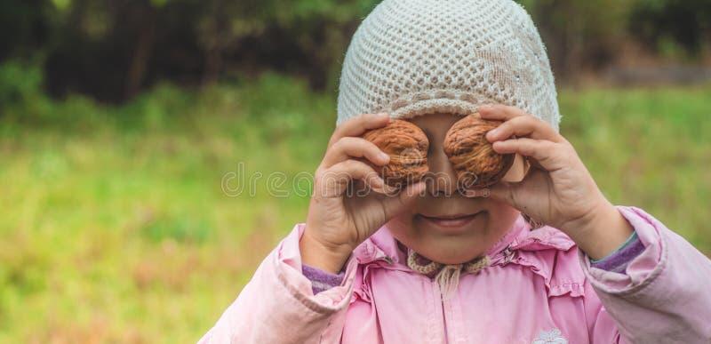 Να παίξει υπαίθρια το χαριτωμένο μικρό κορίτσι που κρατά τα καρύδια μπροστά από την Συγκομιδές καρυδιών Φθινόπωρο στον κήπο, το κ στοκ φωτογραφία