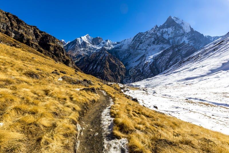 Να πραγματοποιήσει οδοιπορικό στον τρόπο στο στρατόπεδο βάσεων Annapurna στοκ φωτογραφία