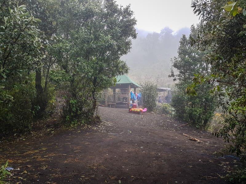 Να πραγματοποιήσει οδοιπορικό το ίχνος του ηφαιστείου Acatenango, Γουατεμάλα στοκ φωτογραφίες με δικαίωμα ελεύθερης χρήσης