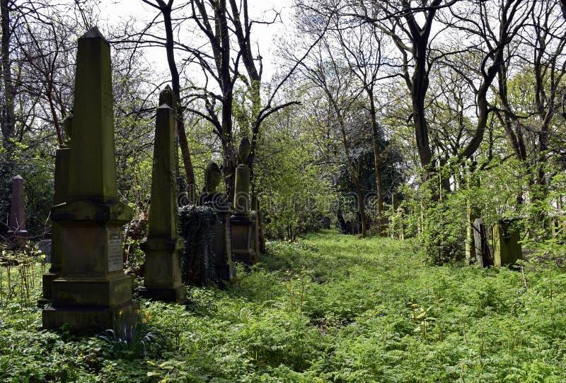 Να συχνάσει το νεκροταφείο και απόκοσμος στοκ εικόνες με δικαίωμα ελεύθερης χρήσης