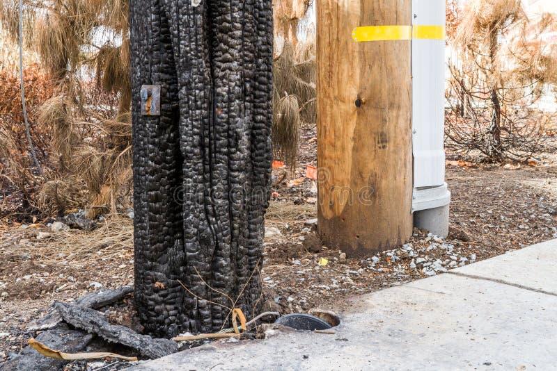 Να φωνάξει στο σκόπευτρο: Έναν μήνα μετά από το 2017 Sonoma Coun στοκ εικόνα