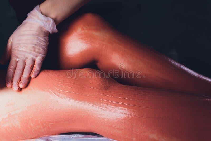 Νεαρές γυναίκες που λαμβάνουν θεραπεία σπα σε σαλόνι. Πήλινη μάσκα σώμΠστοκ εικόνες